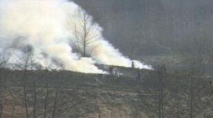 Pięć tysięcy pożarów przez wypalanie traw