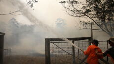 Pożary w Australii (PAP/EPA/DARREN PATEMAN)