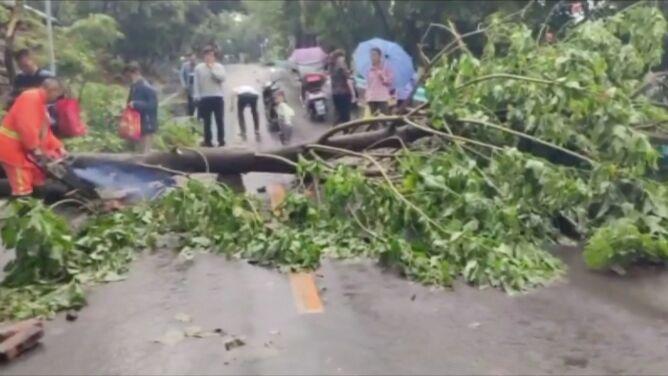 Wiatr połamał ponad 100 drzew, <br />ulewy zalały mieszkania i sklepy
